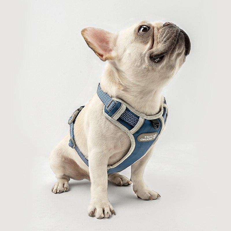 Pet <font><b>Dog</b></font> <font><b>Dog</b></font> <font><b>Harness</b></font> 2019