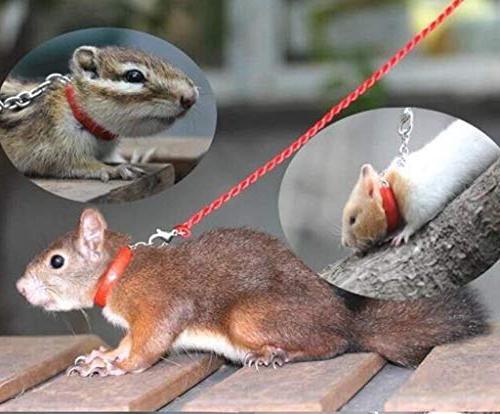 mkki Hamster Flexible Tie Lead Harness with Bells