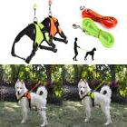 Pet Retractable Dog Puppy Collar with Integrated Leash & Gra
