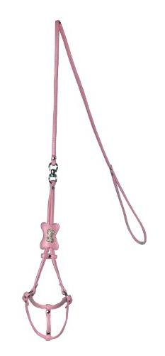 Hip Doggie Bone Step-in Dog Harness and Leash size: X Small,