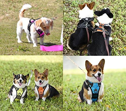 PoyPet No Pull Harness, Lead Adjustable Soft Pet Vest Handle for Large