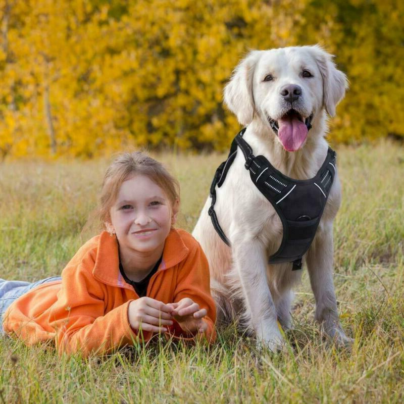 Rabbitgoo Dog Harness Pet Harness Adjustable Outdoor Pet