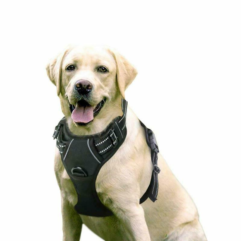 Rabbitgoo Dog Harness No-Pull Pet Harness Adjustable Outdoor