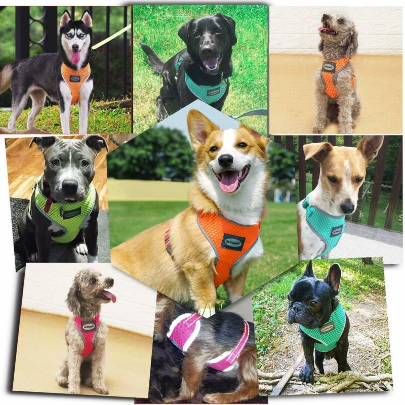 Thinkpet Air Mesh No Pull Puppy Dog Vest