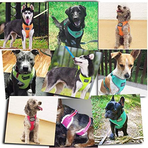 ThinkPet Reflective Air Mesh Pull Puppy Harness Neon Green