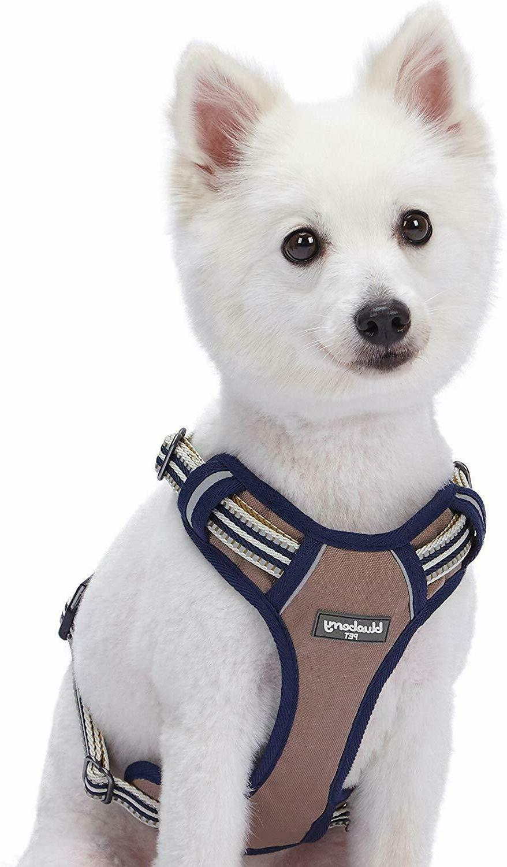 Blueberry Pet Reflective Colored Stripe Padded Dog Vest Harn