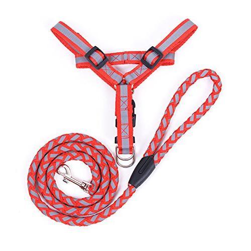 reflective dog harness leash set