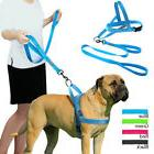 Reflective No Pull Pet Small Large Dog Harness and Leash Set