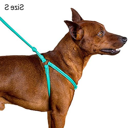 CollarDirect Rolled Harness Puppy Step-in Leash for Walking Pink Red Green Black Purple Beige Brown Yellow
