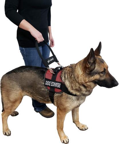 Service Dog Vest & Harness ActiveDogs Bridge Handle