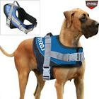 Service Dog Vest Harness Training Vest Adjustable F Medium L