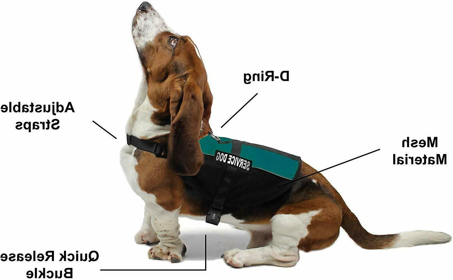 Service Dog Mesh with Removable Patches 12 Colors