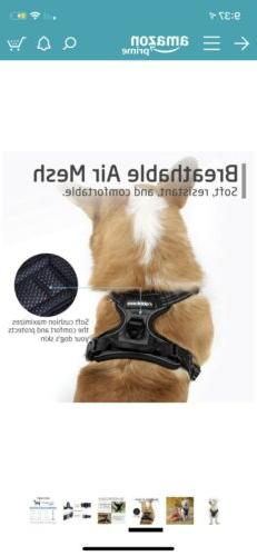 RABBITGOO Size No-Pull Adjustable Harness