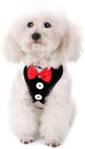 SMALLLEE_LUCKY_STORE Small Tuxedo Boy, Adjustable L