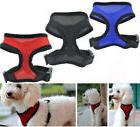 Soft Mesh Dog Harness No Pull Comfort Padded Vest for Small