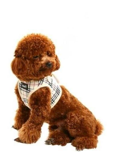 PUPTECK Soft Mesh Dog Harness Nova Padded Vest