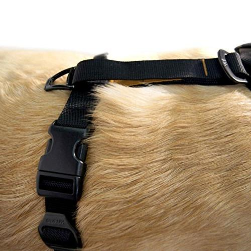 Kurgo Dog Harness, Easy Walking Harness, Quick On Off Harness Seat Belt