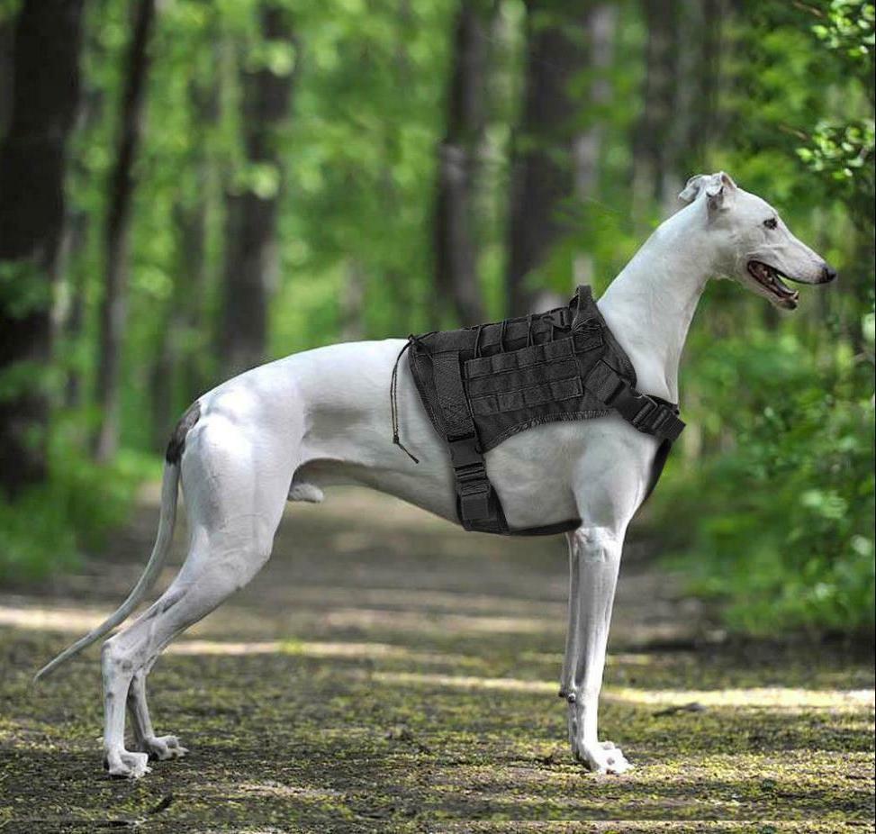 Tactical Dog Nylon Vest+Leash
