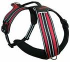 Voyager Adventure No Pull Harness for Dogs w/Two Leash Attac