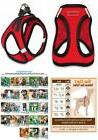 Voyager All Weather No Pull Step-in Mesh Dog Harness Padded