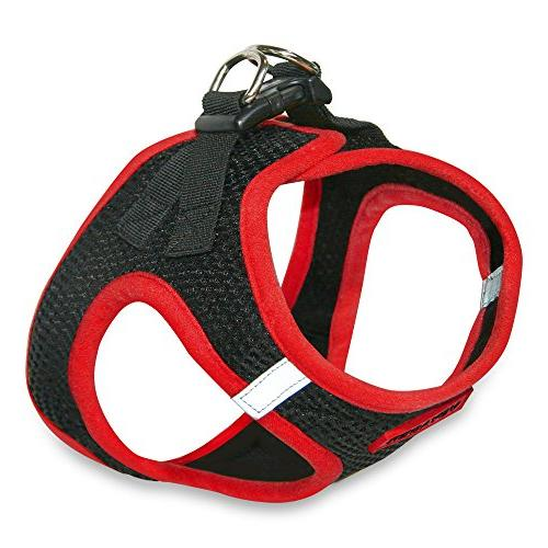 Voyager All Pull Harness with Best Pet Red