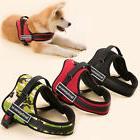 working dog vest service training dog harness