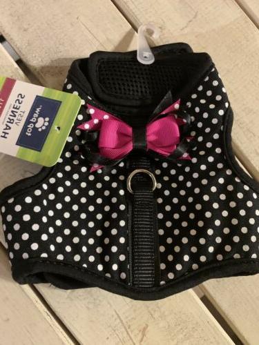 xs polka dots pink bow dog puppy