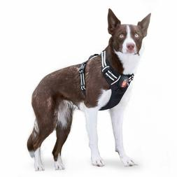 Rabbitgoo LED black large dog harness,USB Recharger No Pull