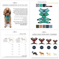 Lucy Co. Reversible Dog Harness Walking Halter - Best Design