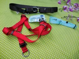 BLUEBERRY PET MARTINGALE Dog Collar Black or Light  BLUE or
