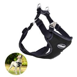 BINGPET No Pull Dog Harness Reflective for Pet Puppy - Train