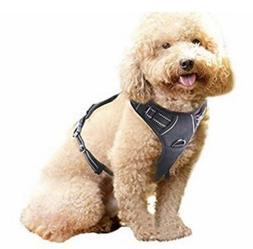Rabbitgoo No-Pull Dog Harness Size Small Black
