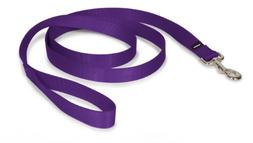 "PetSafe Nylon Leash, 1"" x 6', Deep Purple"