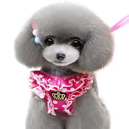 Alfie Pet by Petoga Couture - Megan Step-in Harness and Leas