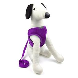 Alfie Pet by Petoga Couture - Joyce Step-in Harness and Leas