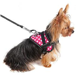 Alfie Pet by Petoga Couture - Justice Harness Vest and Leash
