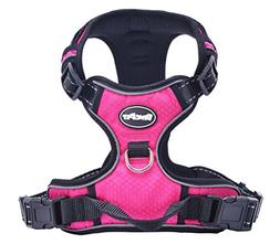 EXPAWLORER Best No-Pull Dog Harness. 3M Reflective Outdoor A