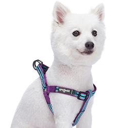 Blueberry Pet 5 Colors Step-in 3M Reflective Multi-Colored S