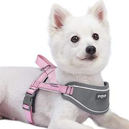 Blueberry Pet New 5 Colors Soft & Comfy 3M Reflective Strips