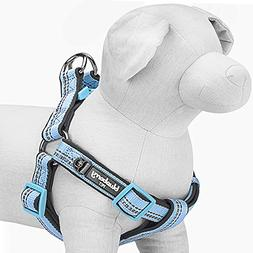 Blueberry Pet 4 Colors Soft & Comfy 3M Reflective Step-in Pa