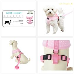 EXPAWLORER Soft Mesh Polka Dots Dog Harness with Matching Le
