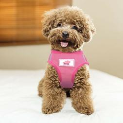 Soft Mesh Small Dog Harness Step-in Puppy Harness Leash Set