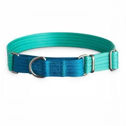 Good2Go Teal and Blue Two Tone Martingale Dog Collar, Large