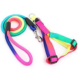 365Cor Rainbow Dog Harness And Leash Set 120cm Long Durable