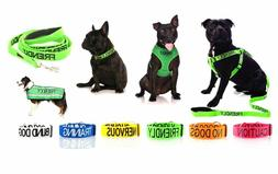 Warning Dog Colour Coded Collar Lead Leash Harness Friendly